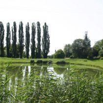 vitry-sur-orne-etang-du-tivoli